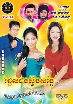 DVD Karaoke SR Vol 14 | ផលិតកម្មស្រីរត្ន័