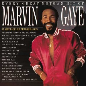 Marvin Gaye Every Great Motown Hit [LP]